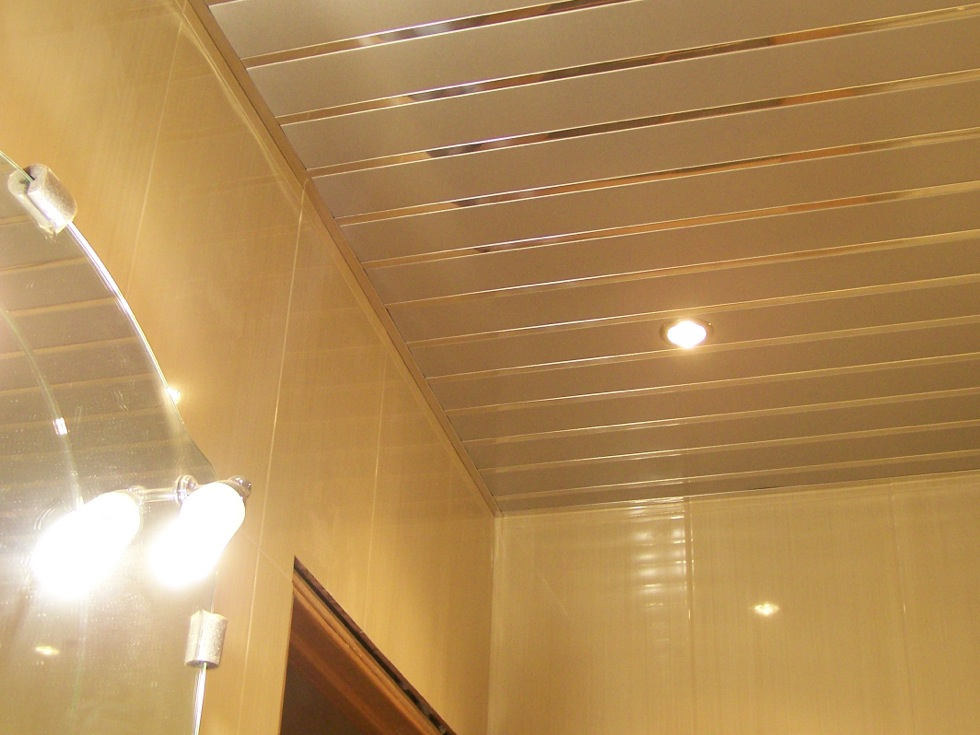Реечный потолок 100 мм со вставкой 25 мм